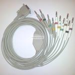 Câble ECG patient 10 brins à fiche banane 4 mm et peigne