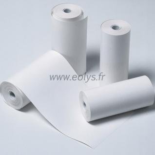 Boîte de 10 rouleaux de papier en largeur 112 mm pour MicroLab®